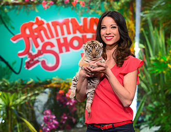 Les animaux font leur show 100 btisier n1 sur - Les animaux font leur show ...